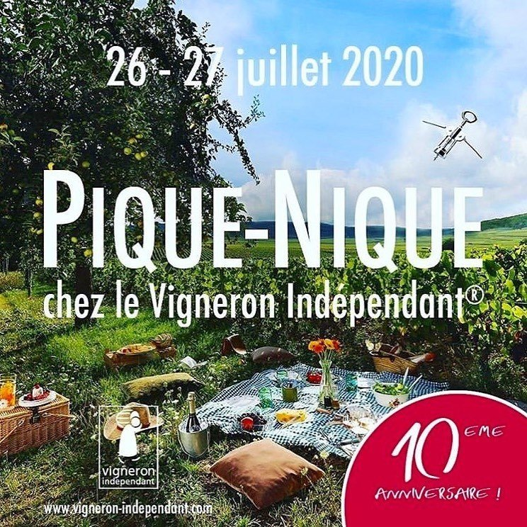 Read more about the article Picnic at the Independent Winegrower's